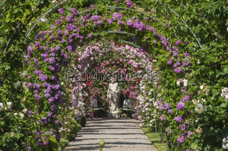 rose garden noticias baden baden