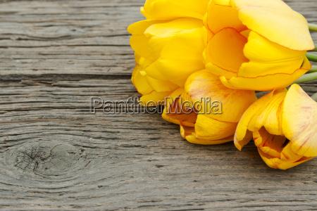 flor planta verde madera marron boda