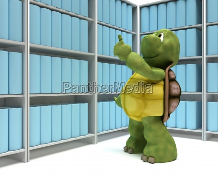 tortoise with books in library