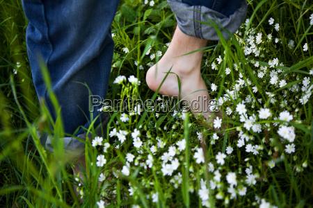 los pies descalzos sobre la hierba