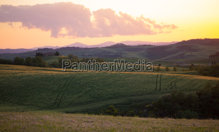 orange colored sky and fields in