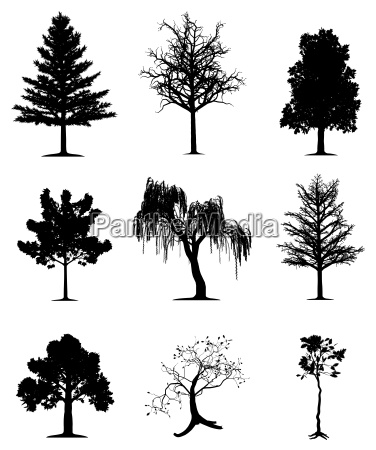 trees collection vector eps