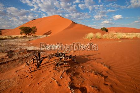 desierto namibia duna paisaje naturaleza arenas