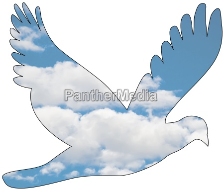 dove with cloud pattern graficos