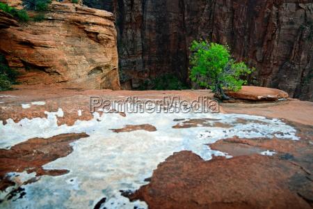 eeuu america canyon paisaje naturaleza