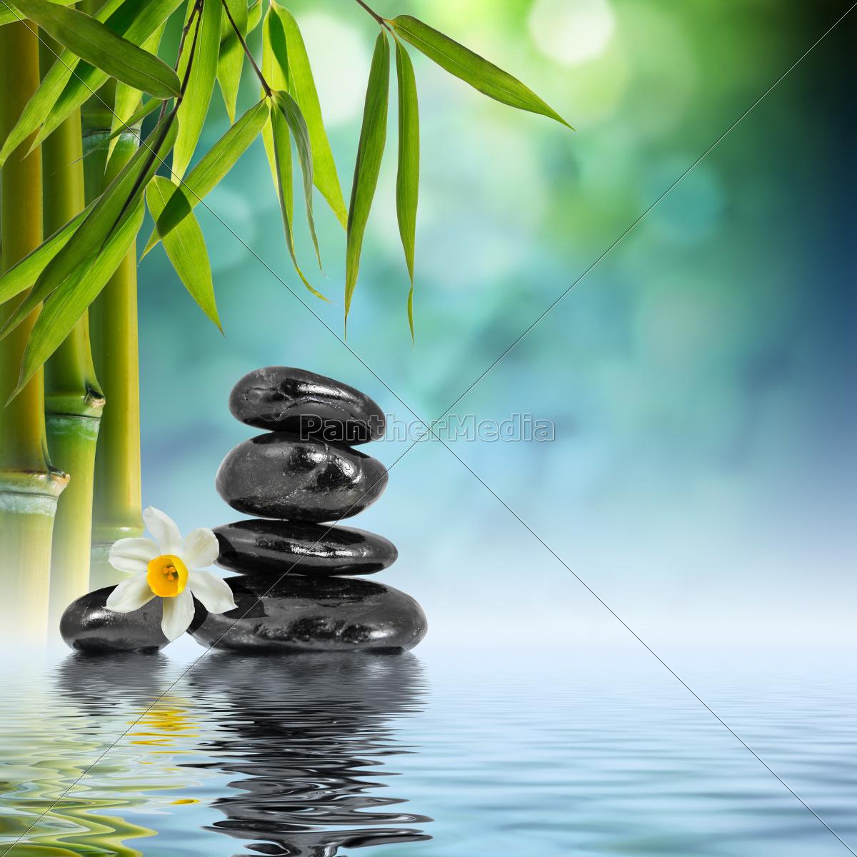 piedras, y, bambú, en, el, agua - 9763236