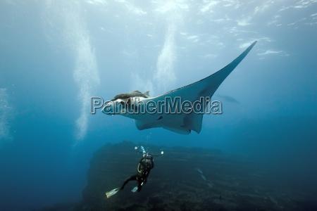 submarino rayo de luz fotografo rayo