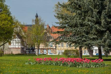 casa construccion historico parque flor flores