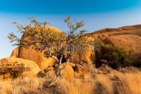 desierto africa namibia seco