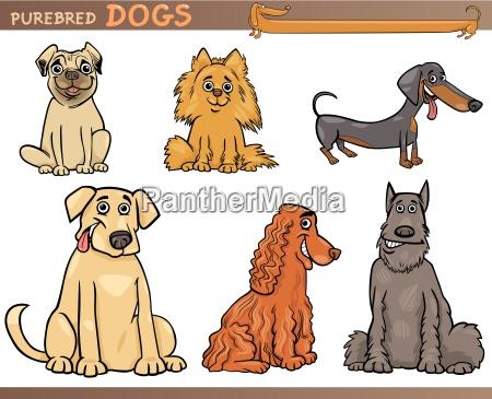 purebred perros conjunto de ilustracion de