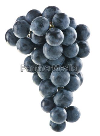 racimo, de, uvas, rojas, frescas, aisladas - 10107213