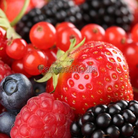 frutas fresa bayas baya moras arandanos