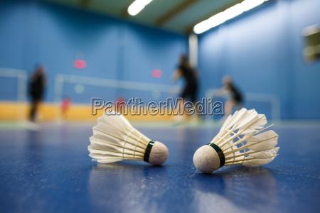 badminton, -, pistas, de, bádminton, con - 10188977