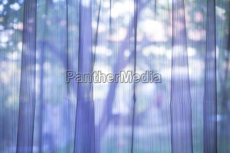 fondo de cortina transparente purpura