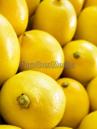 comida vender enorme maduro mercado fruta