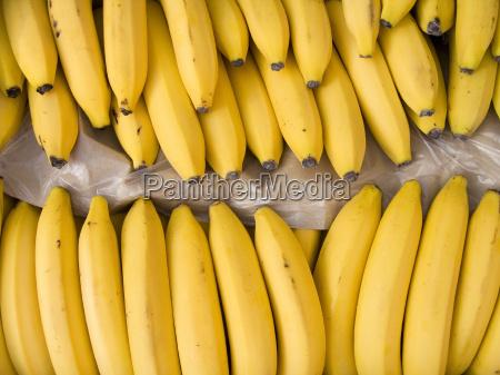 plátanos, en, una, caja - 10236919