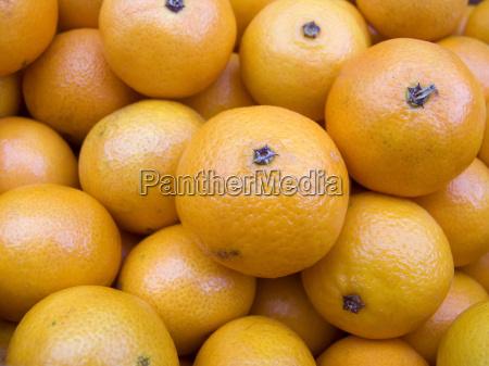 naranja comida hermoso bueno vender primer