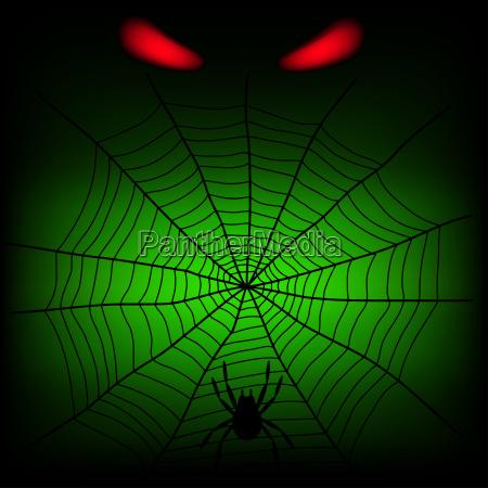 esperar espera peligro animal insecto verde