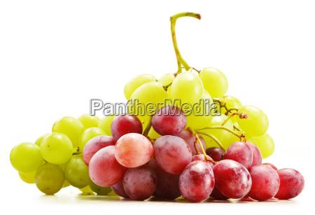 comida liberado fruta aislado dieta grupo