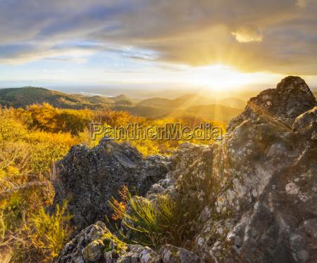 sunshine in dreamland