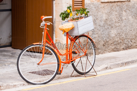 senyoras de la bicicleta en color