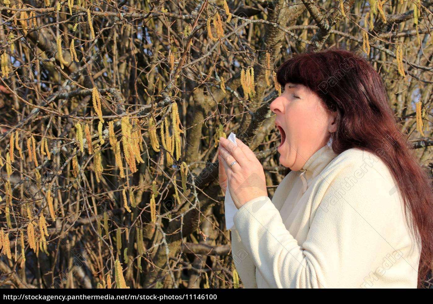 alergias, en, primavera - 11146100
