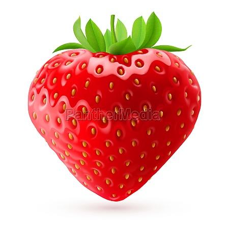 fresa apetitoso