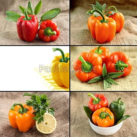 concepto de alimentos saludables y organicos