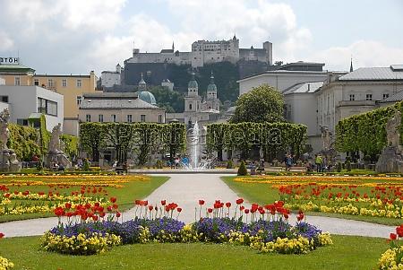 historico ciudad parque flor planta de