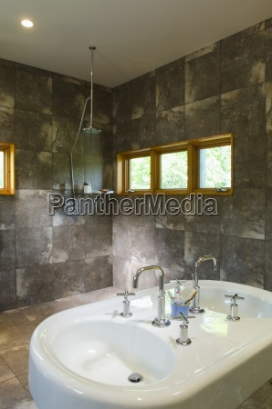 modern double bathroom sink in spacious