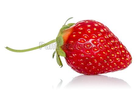 comida agricultura fruta fresa baya postre