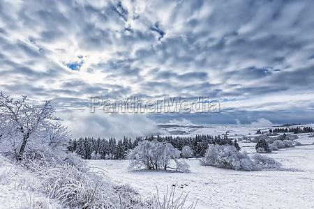 invierno niebla hielo escarcha nieve las