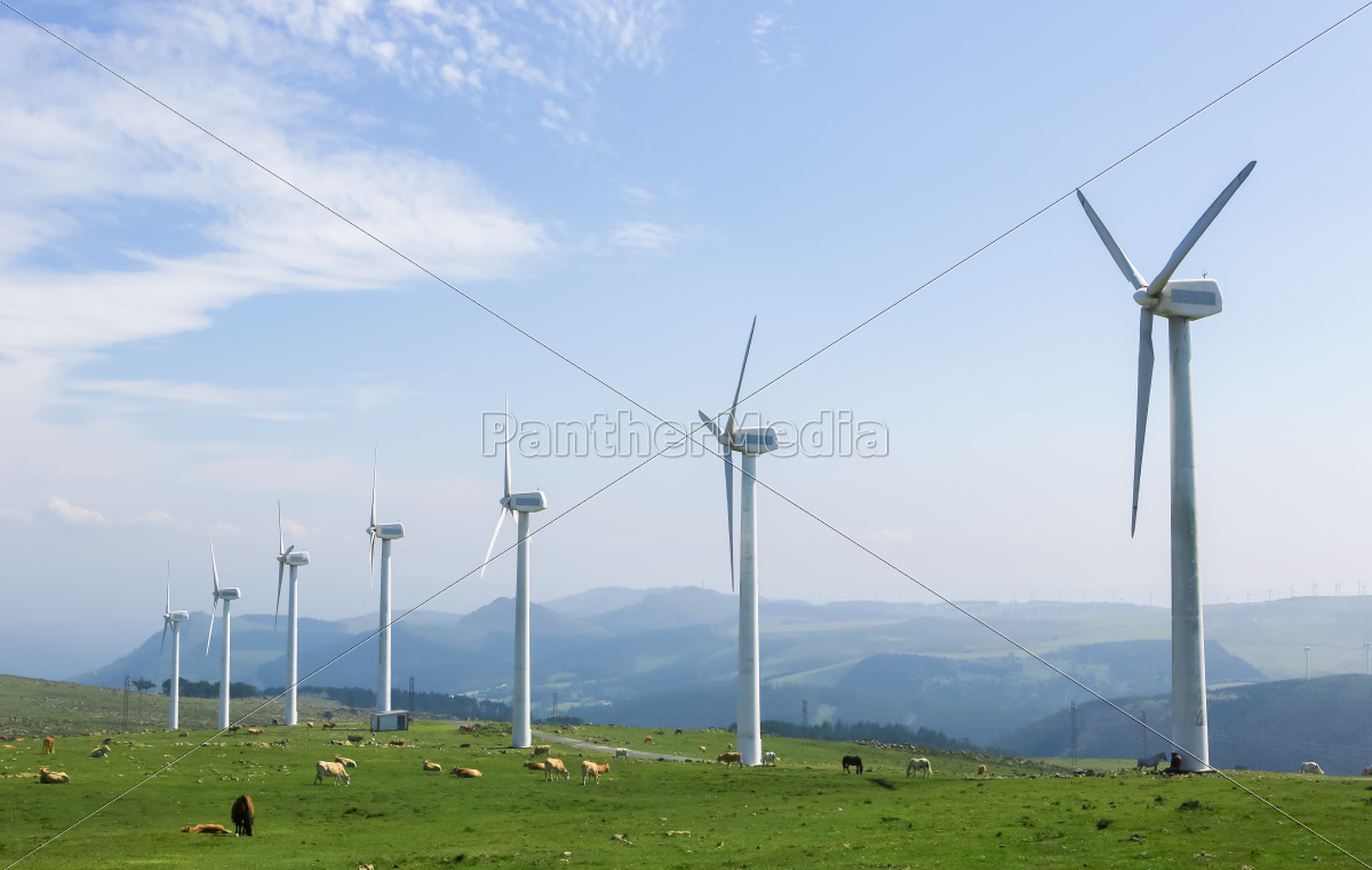 eólico - 12139504