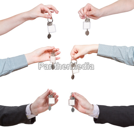 conjunto de manos con el anillo
