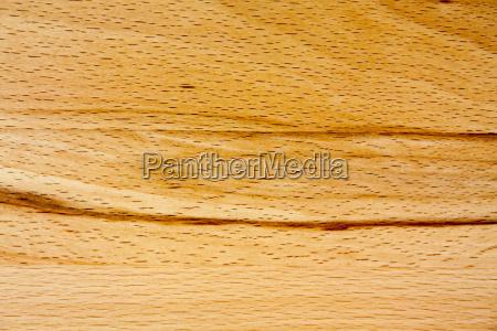 detalle de un nucleo de madera