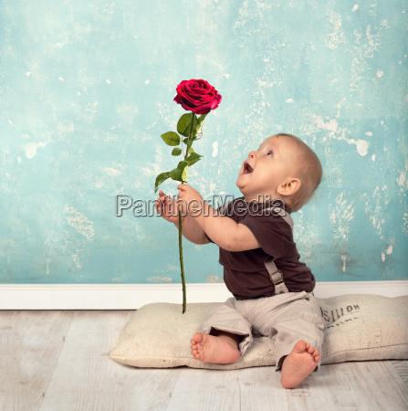 dar una rosa