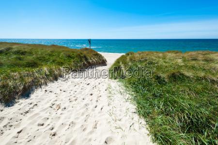 libertad soledad de agua salada mar
