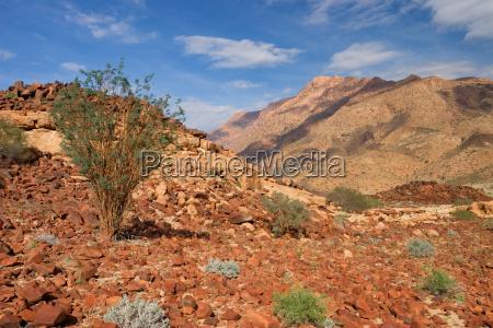 desierto africa namibia ecologia geologia paisaje