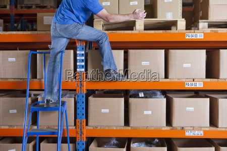 worker standing on shelf and shifting