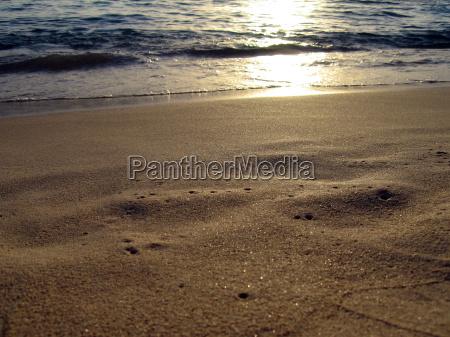 primer plano fiesta vacaciones playa la