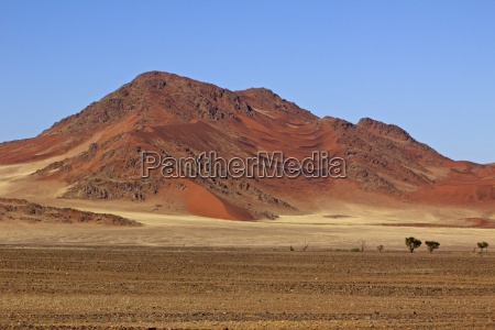 desierto africa sabana namibia estepa duna