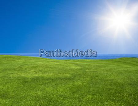 hermoso paisaje verde