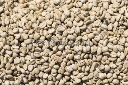 cafe crudo seco semiluxury alimentos asado