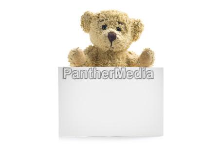 oso de peluche con la tarjeta
