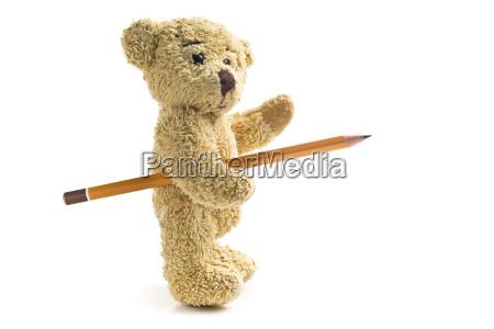 oso de peluche con un lapiz