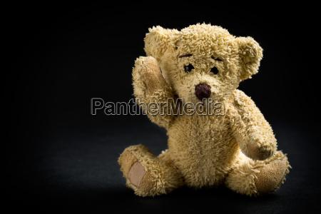 objeto solitario animal oso marron relleno