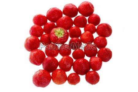 liberado aislado fresa unico sobresalir souffle