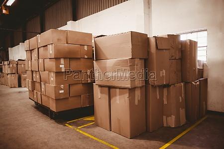 cajas de carton en almacen
