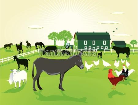 animales en la granja