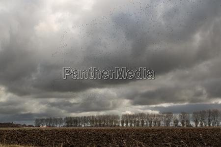 tormenta ostfriesland nube de lluvia cielo